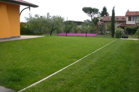 Image 14: T&G di Buttelli Sandro e Niccoli Renato s.n.c.